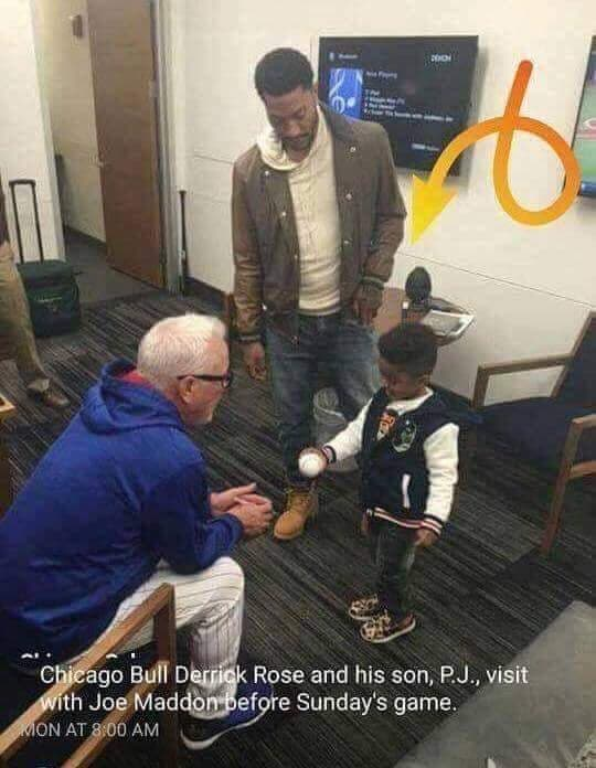Joe Maddon Rainstone